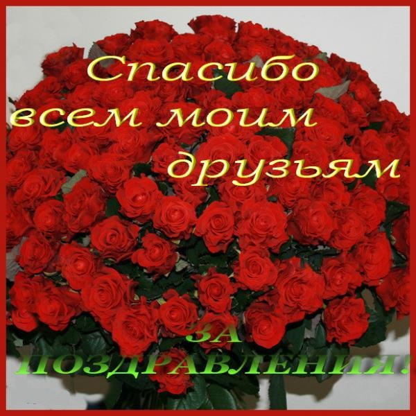 Любимые друзья всем спасибо за поздравления